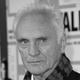 Frases de Terence Stamp